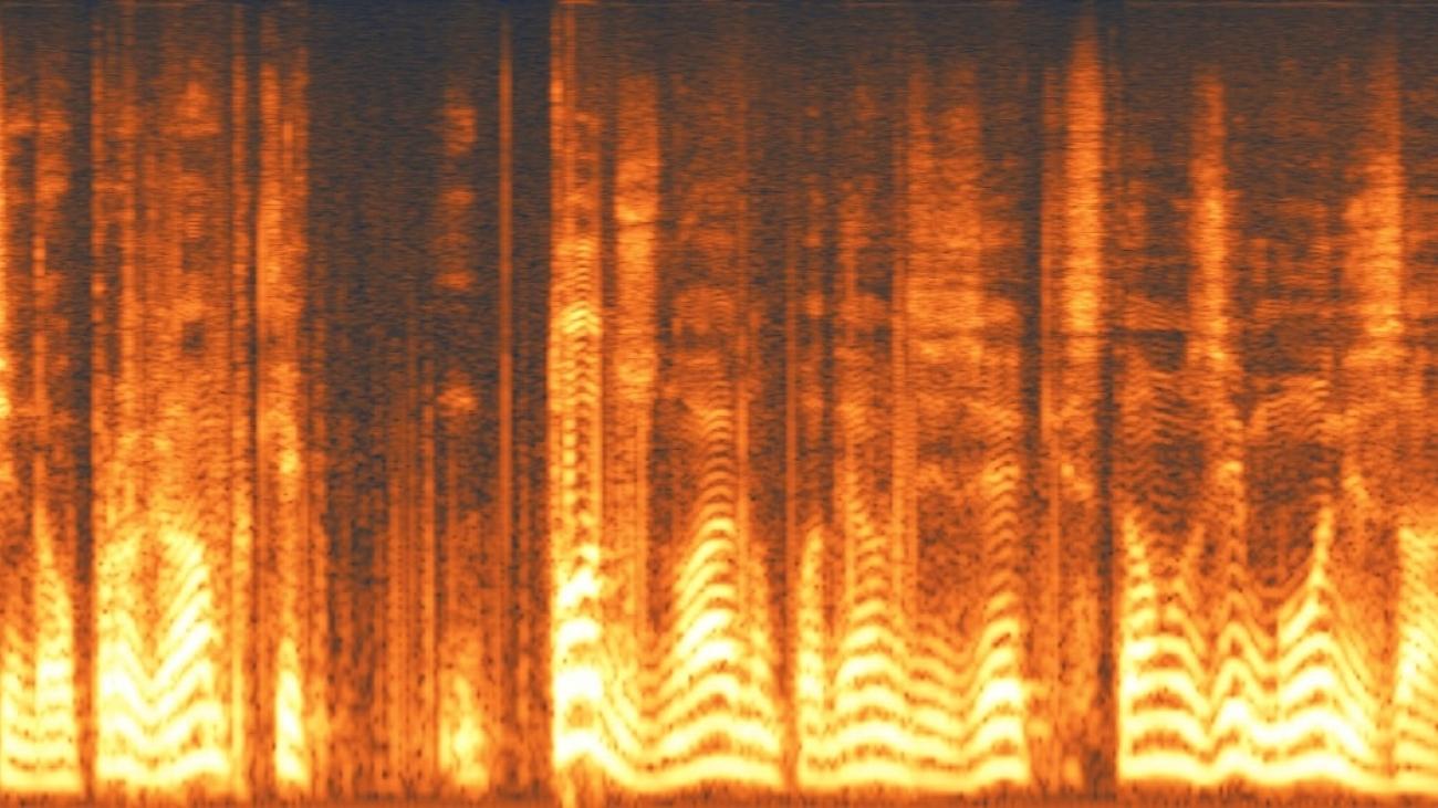 melhorar áudio para salvar gravação